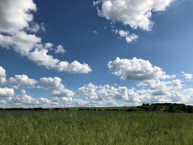 Just testing some stuff still works #ios12 Clouds MobileSky Cloud - Sky Sky Plant Field Beauty In Nature Land Tranquil Scene