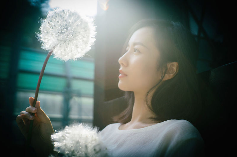 One Person Young Adult Contemplation Headshot Holding Adult Looking Portrait Beautiful Woman Beauty Young Women Hair Indoors  Women Hairstyle Sunlight Long Hair Lens Flare Softness Asian  Asian Girl Blackhair Blackeyes Dandelion Portrait Of A Woman Portrait Photography