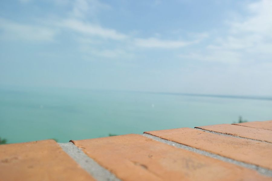 Hungary Balaton Photography Amazing View Macro Photo By My Girlfriend