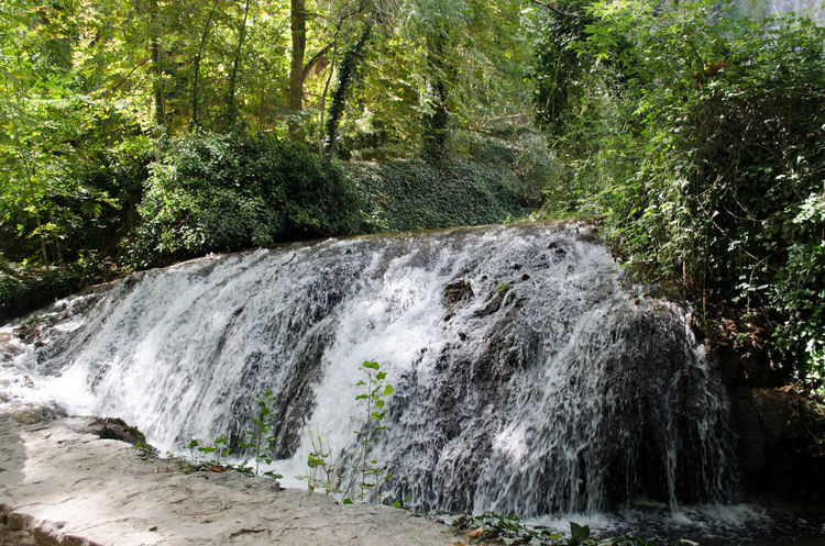 Monasterio de Piedra, El rio Piedra y sus cascadas. 2015  Beauty Beauty In Nature Day Eddl Environment Forest Freshness Monasterio De Piedra Monastery Monastery Of Stone Motion Natural Parkland Nature No People Outdoors Power In Nature Scenics Stone's Monastery Summer Tree Water Waterfall
