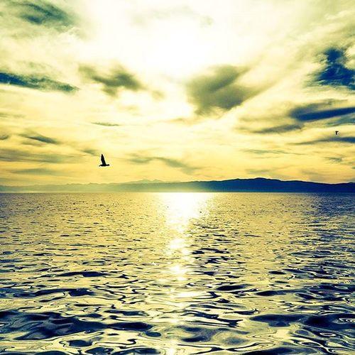 gel de yanma geçip giden hayata, gel de içme böyle dünyaya.. lets fly together, lets burn together..