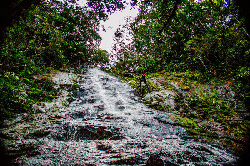 Ecoturismo Meleiro, Brazil Relaxing Turismo De Aventura Beauty In Nature Day Ecoturism Forest Freshness Growth Motion Nature No People Outdoors River Rock - Object Scenics Tranquility Tree Water Waterfall