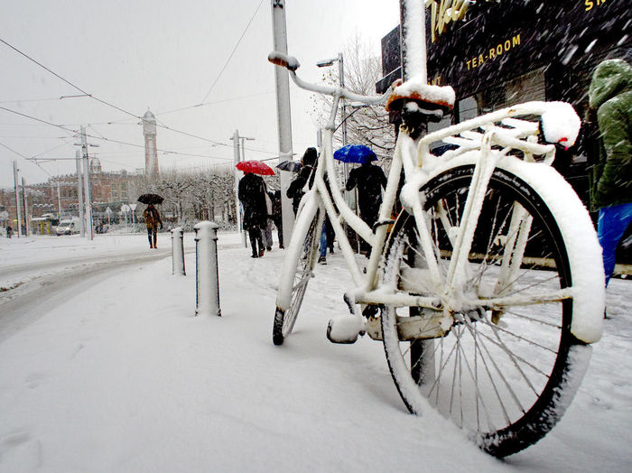 Ghent Station Winter Bicycle Bike Cold Temperature Day Land Vehicle Mammal Men Mode Of Transport Nature One Person Outdoors People Real People Road Snow Street Streetphotography Transportation Umbrella Winter