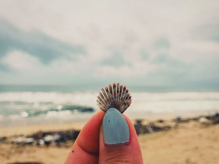 "Life in a ""sea""shell Landscape Backpacker Wanderlust Travel Destinations Seashell Kerala India EyeEm Selects Human Hand Land Nature Focus On Foreground Personal Perspective Beach Cloud - Sky Close-up EyeEmNewHere"