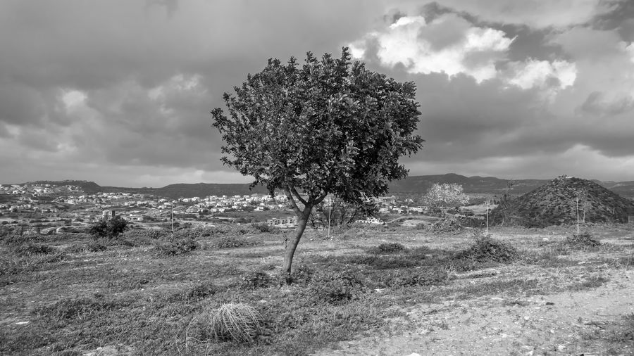 Cloud - Sky Sky Plant Tree Environment Land Beauty In Nature Nature Field Landscape Day Tranquil Scene Tranquility Growth Scenics - Nature Grass No People Non-urban Scene Outdoors Mountain Semi-arid Blackandwhite EyeEm EyeEm Best Shots EyeEm Nature Lover