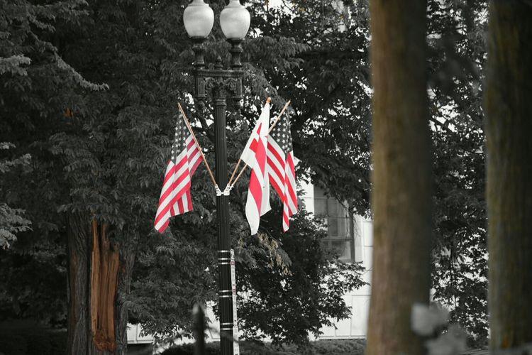 American Flag Flags WashingtonDC Patriotic Streetphotography Blackandwhite Photography Memorialday
