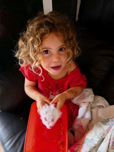 Childhood Real People Looking At Camera One Person Indoors  Portrait Pets One Animal Girls Domestic Animals Home Interior Happiness Smiling Hamster