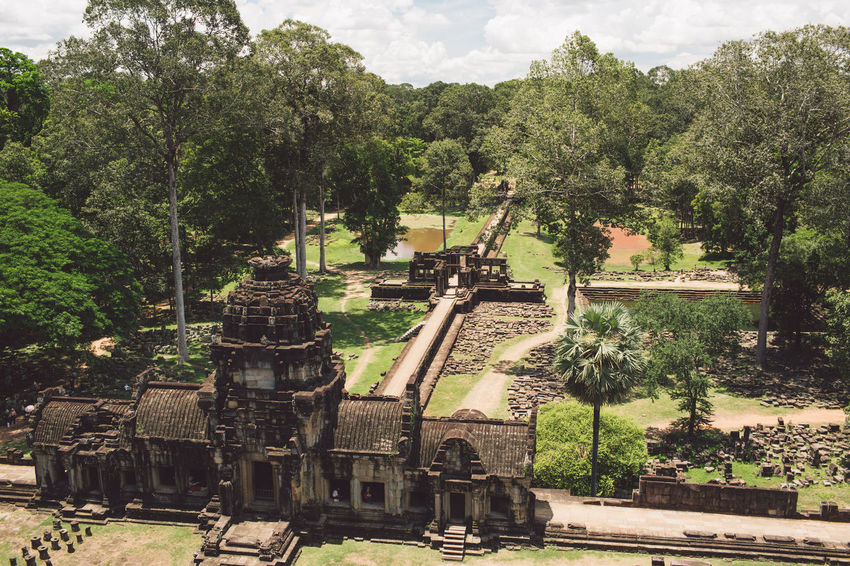 Siem Reap Cambodia Angkor Tree Plant Religion History The Past Belief Architecture Built Structure Place Of Worship Nature Ancient Day Spirituality No People Sky Ancient Civilization Growth Old Travel Destinations Outdoors