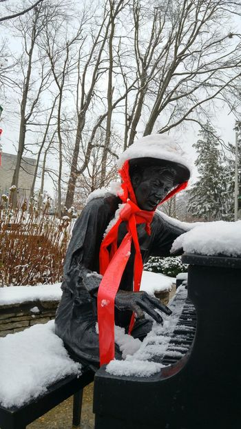 Red Winter Christmas One Person Human Body Part Outdoors Day Snow Piano Piano Keyboard  Piano Player Statue Hat Hand Winter Indiana University Adult Snow White Grand Piano