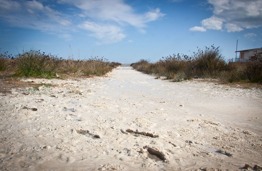 Accidents And Disasters Beach Beachphotography Clouds Day Ecosystem  Environment Landscape Marsh Nature No People Outdoors Sand Sardegna Sardegnaofficial Sea Sea And Sky Sky Social Issues Stillness Sun Sunset Tree Water Wetland