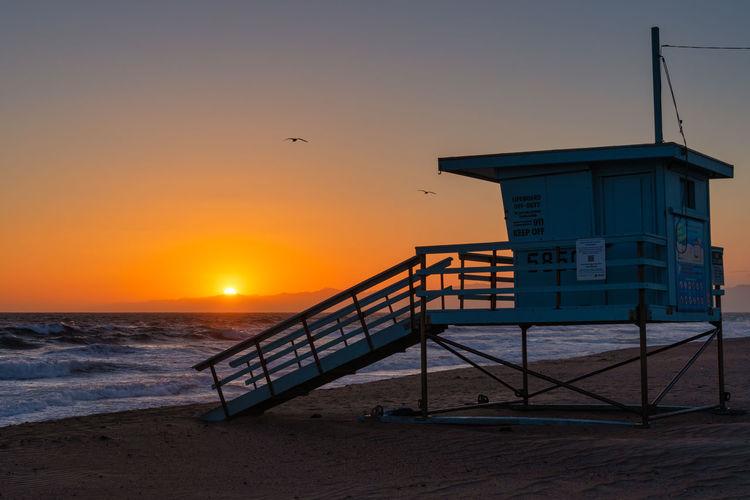 Seagull on beach against sky during sunset
