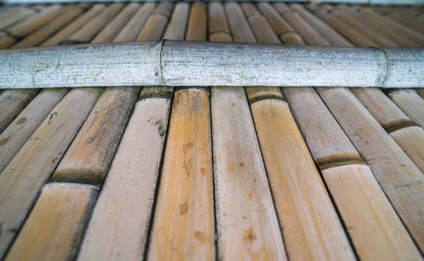 Wood - Material Day No People Outdoors Close-up Timber Nature Bamboo Fence Japan