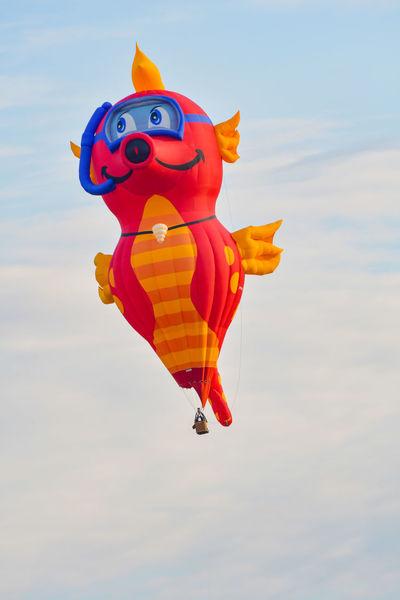 11. International German Cup GermanCup Pforzheim Germany Aerostat Animal Representation Balloon Ballooning Festival Cloud - Sky Day Festival Flying Hot-air Balloon Multi Colored No People Orange Color Outdoors Pforzheim Sky