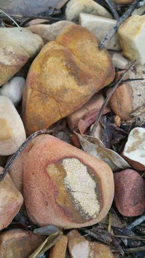 EyeEm Selects Beach Rocks Stones Outdoors Queenslandsbeauty Freshness Nature