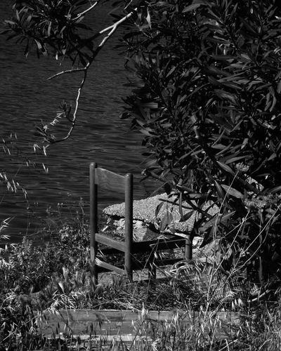 Mywork Nature Passionforphotography Amateurphotography Canon1100d Canoneos1100D Canon_offical Exploring Outdoors Sicily City Plant No People Bnwphotography Bnw Bnw_city Bnw_shot Bnw_collection Bnw_captures Lake Lake View Lakeside