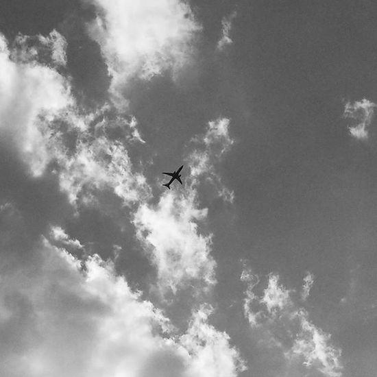 That moment, when you dream to fly Dreamtofly Fly Aeroportobologna Aeroportomarconi Bologna Vivobologna Visitbologna Volgobologna Volgoitalia Instabologna Instasky Likeforlike Followme Followmypic Italian_trips Bestpic Blackandwhite Italy_photolovers Photomypassion