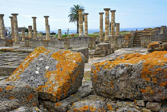 Ancient Civilization Andalucía Andalusia Archaeology Arquitecture Baelo Claudia Cadiz Column Columns Day Eye4photography  Old Ruin Outdoors Roman Sky SPAIN Spaın Stone