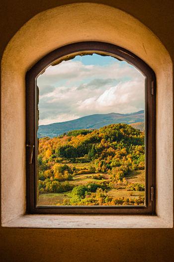 Trees on landscape seen through window