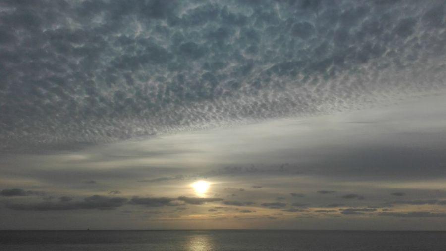...perlas ensangretadas, flores! Pisoteadas!!!!... Santa Cruz De Tenerife Quesuerteviviraqui Reflexiones PlaceresDeLaVida Reflection_collection EyeEmBestPics Sombras Sky_collection Eye4photography  Colorful Naturelovers Clouds And Sky Naturaleza Naturaleza Muerta Nubesdehoy Cloudporn Mis Mañanas