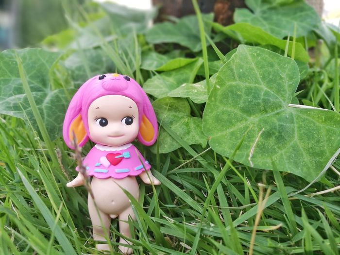 Pink Color Green Color Grass Close-up Valentine's Day  Toy Doll Minifigures Collection Toyphotography Kewpiedoll Toy Photography Cute Figure Dolls Sonnyangel Sonnyangelthailand Minifigure Kewpie Thailand