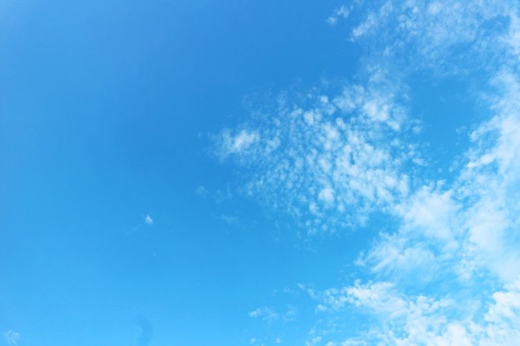 Blue Sky Low Angle View Nature Beauty In Nature Sky Only Cloud - Sky Day No People Tranquility Backgrounds Scenics Tranquil Scene Outdoors