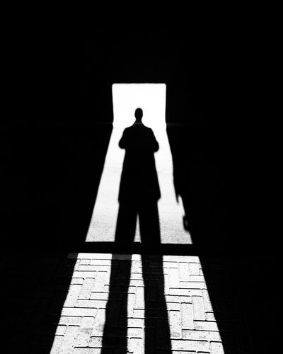 It's me, chasing my own shadow at home. What Who Where Real People Outline Adult People One Person One Man Only Only Men Welcome To Black Adults Only Shadow Full Length Indoors  Day The City Light BYOPaper!