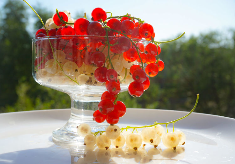 Close-up of red berries on glass table