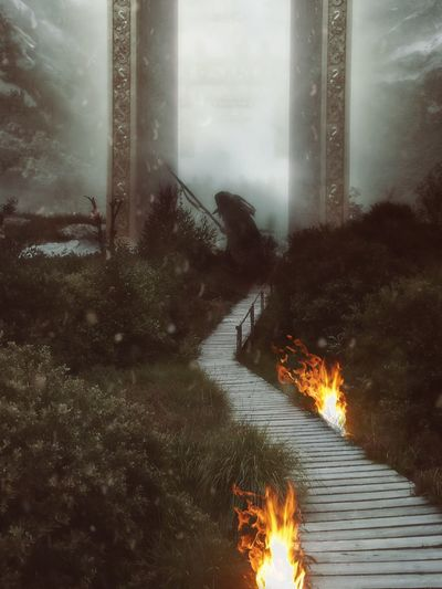 Burning Flame Landscape Germany Nature Medieval Vikings  Viking Odin Feuer Wikinger Mythology Artphotography Outdoors Photooftheday