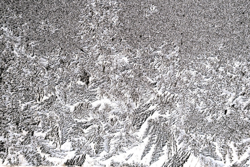 Frozen iced background. Ice pattern on the glass. Macro frost turn into negative black white photo Snowflakes ❄ Ice Winter Wintertime ⛄ Frozen Pattern Cristals Snow No People Cold Temperature Backgrounds Textured  Nature White Color Abstract Snowing Macro Photography Icy Frosty Frost Rime Ice Freeze Flare Sparkles Black & White Negative Photography Textures and Surfaces Whitefrost Rime Ice Pattern Snowflakes Pattern Snow Crystals Macro Nature Snow Macro Snowlake Close-up Frozy Glass Glare Structure And Nature