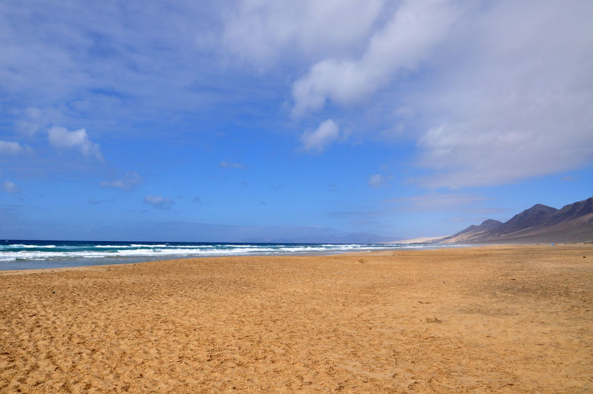 beautiful fuerteventura canary island view Canairias Canary Canary Island Canary Islands Fuerteventura Fuerteventuraexperience Island Landscape Landscape_Collection Mountains Natuer_collection Nature SPAIN Travel Travel Destinations Travel Photography Traveling Travelling Tree Vacation
