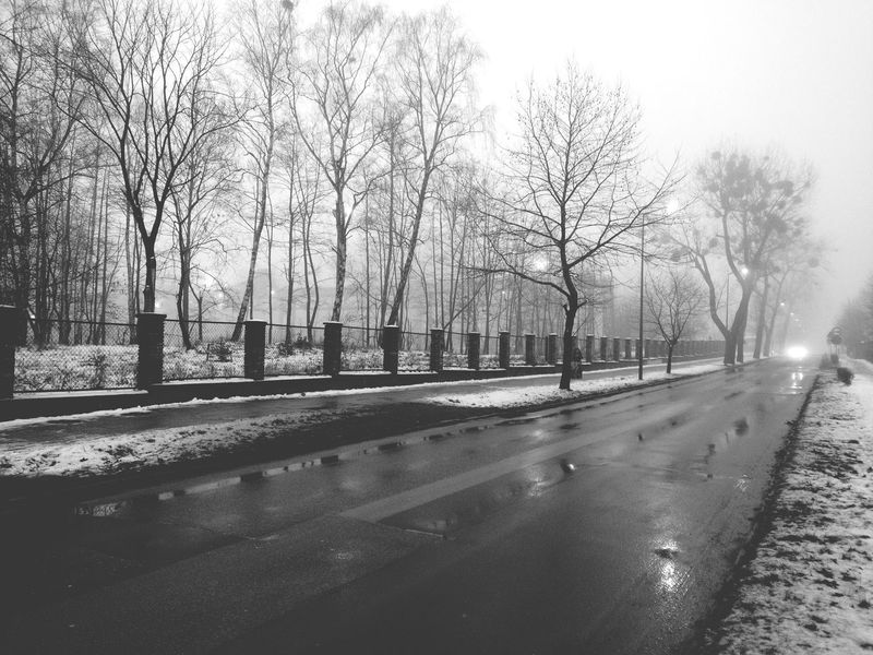 Black And White Black & White Street Photography Low Contrasts Street Trees Walkside Fence Streetlamp Carlights Winter Rainy Day Wet Reflections Moto X Wasiak EyeEm Best Shots Snow From My Point Of View B&w Street Photography Fog