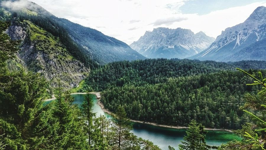 Scenic view of forest by lake against zugspitze mountain