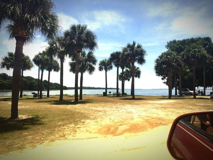 ......And I found serenity right down the street 2MinutesFromHome Palmtrees MyNewHidingPlace