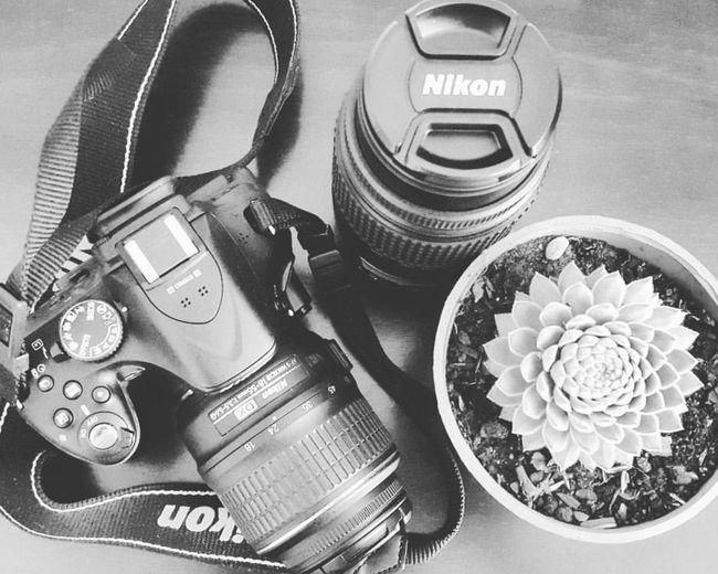 🌌 Photography Nikonphotography Nikon Nikon D5200 Suculent Suculove Pasiones Lens Succulentlove SucculentsLover Cactus Wristwatch Clock High Angle View Table Close-up