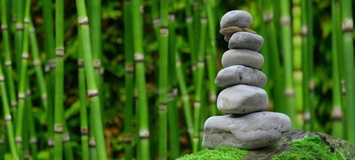 EyeEm Best Shots Nature Photography Balance Bamboo - Plant Beauty In Nature Close-up Day Focus On Foreground Green Color Land Nature Nature_collection Naturelovers No People Outdoors Pebble Plant Rock Rock - Object Solid Stack Stone Stone - Object Tranquility Zen-like