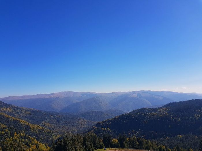 Blue Sky Clear Sky Scenics Tranquil Scene Tranquility Mountain High Angle View Aerial View Panorama Nature Beauty In Nature Beauty Idyllic Blue Color Rocky Mountains Mountain View Calm Autumn Tree Hill Blue Forest Sky Mountain Range Landscape Valley Mountain Peak