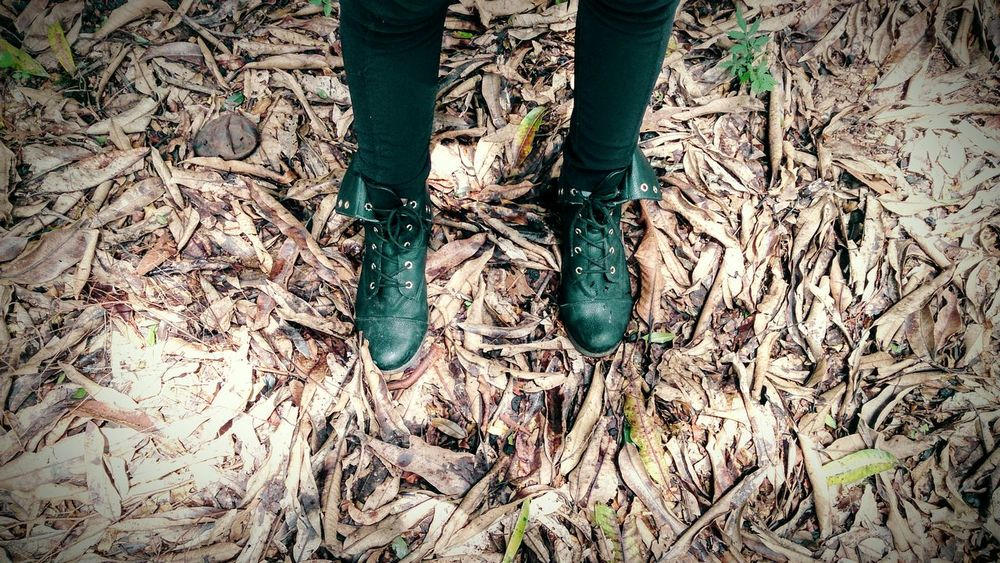 Fall Leaves Leaves On The Ground Boots Black Boots Relaxing Black Pants Leaves_collection My Sister Human And Nature Looking Down