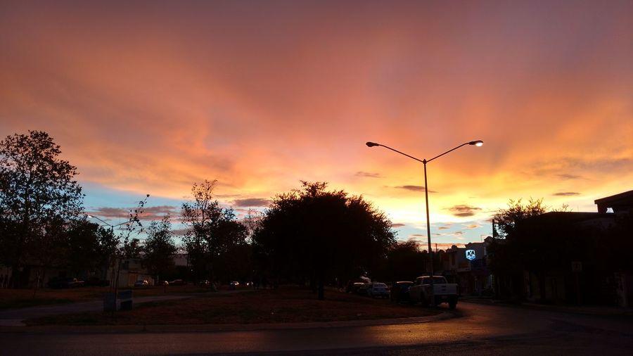 Atardecer Sunset Street Light Tree Outdoors Tranquil Scene Dark Monterrey Mexico