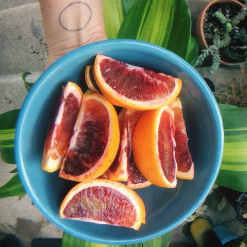 The harmony of blood oranges in the cloudy afternoon. Fruits California The Current Sea Living Bold Orange Citrus  Visual Feast