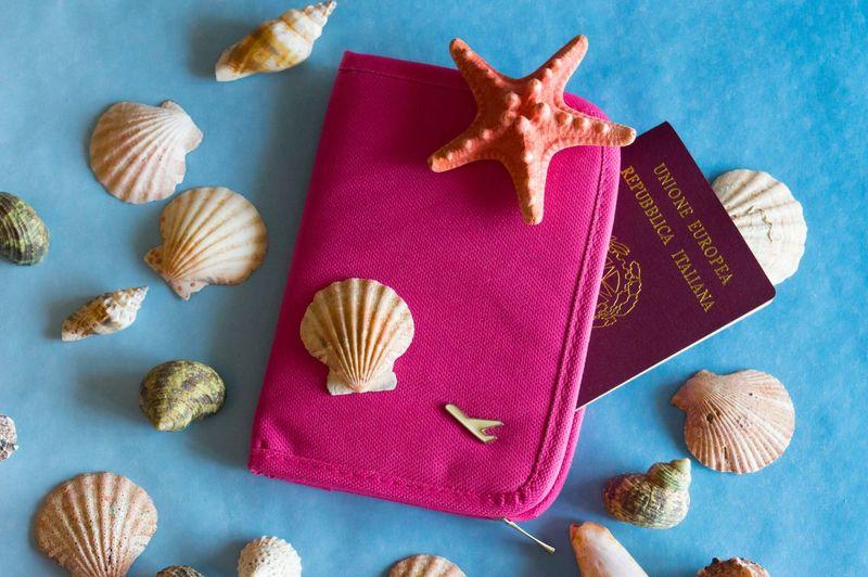 High angle view of sea shells and bag with passport on table
