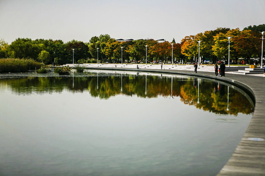 World Cup Park Seoul Korea Lake Mirror Reflection Fall Beauty Autumn Autumn Color Water Reflection