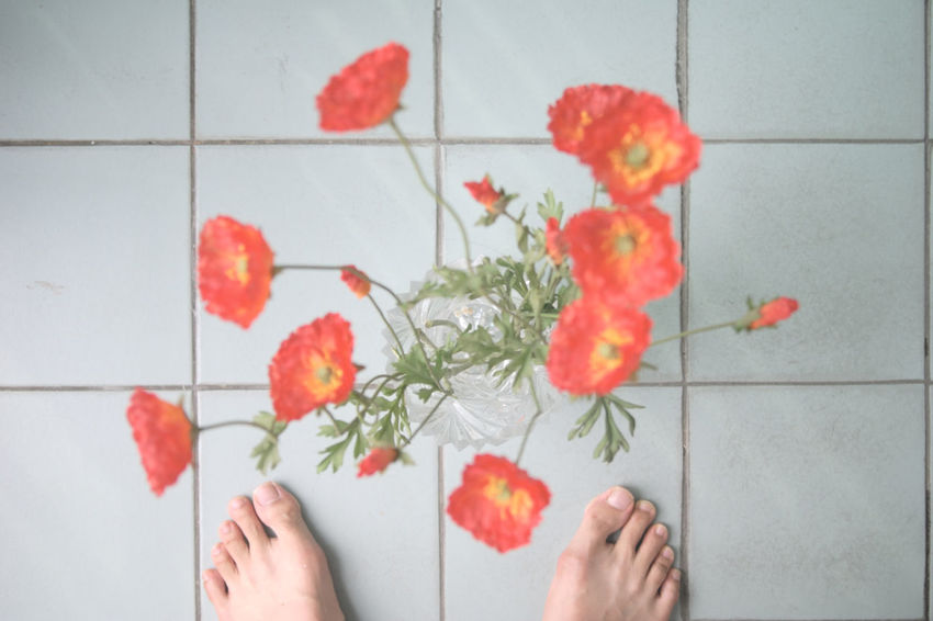 35mm Film Flpwers Foot Kodak Portra Nikon Fm2 Red Flowers Simple Tiled Floor 43 Golden Moments
