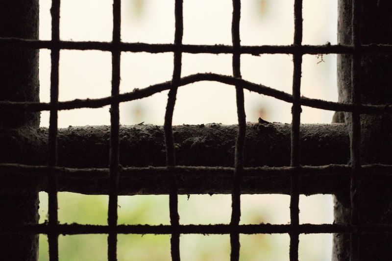 #Barriers #Ex_Opg #naples #napoli #prison Architecture Barrier Boundary Close-up Day Fence Focus On Foreground Metal Nature No People Old Outdoors Pattern Plant Protection Safety Security Sky Tree Water