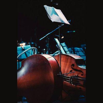 Прекрасное завершение концертного сезона! Perfect completion of the concert season! Концерт AlessandroSafina в Анапе на Летней эстраде, 10.09.15 фоторепортаж от Wigandt_photo (ЭрикВигант ) http://vk.com/album-39646789_221118676 Safina Wigandt Anapa Aнапа новороссийск краснодар Уфа краснодарскийкрай Россия Russia Concert концерт живаямузыка LiveMusic Liveshow шоу Show музыка Report репортаж Sonyalpha mlnolta мировыехиты тенор Italian академическоеЧБ
