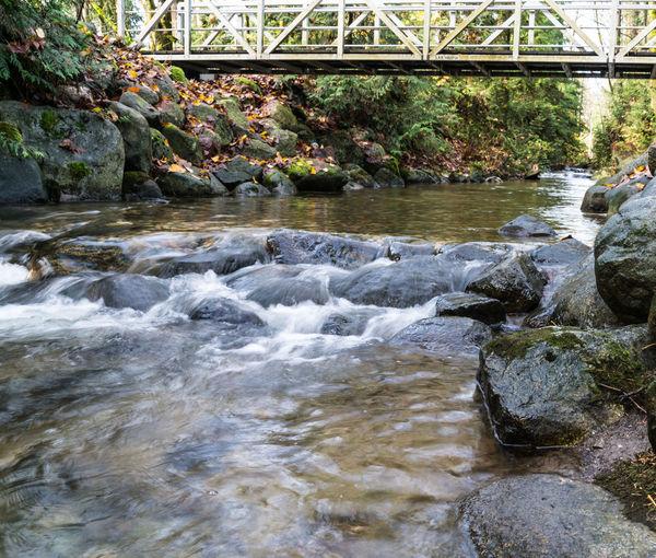 #beautifulbc #spawningcreek #supernaturalBC Beauty In Nature Bridge - Man Made Structure Day Idyllic Motion Nature No People Outdoors River Rock - Object Scenics Tree Water Waterfall