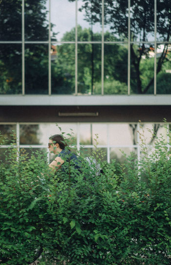 Man perching on plant by window