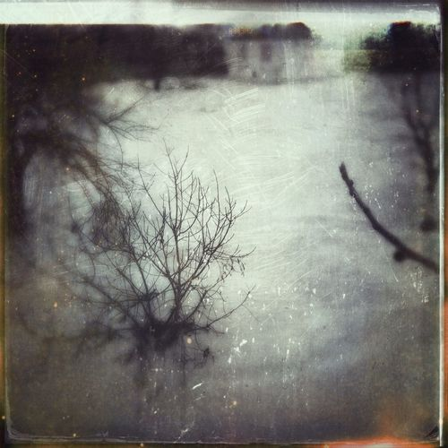 Ice~Land