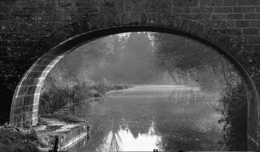 Calm lake along plants seen through arched wall