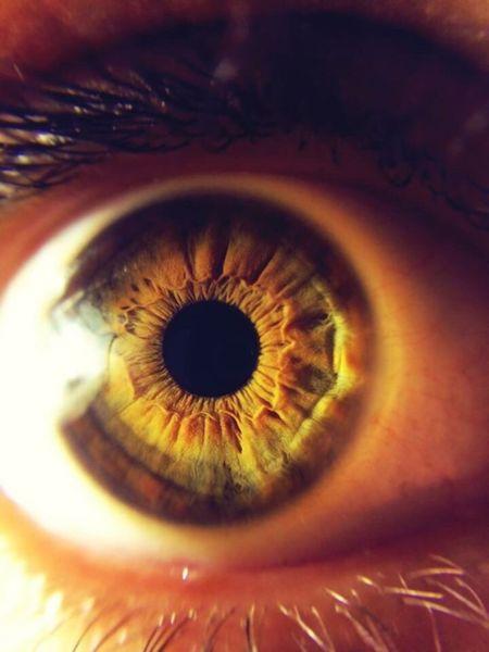 Photography Eye4photography  Humaneye Taking Photos Photo Universe Macro Eyes EyeEm Photooftheday