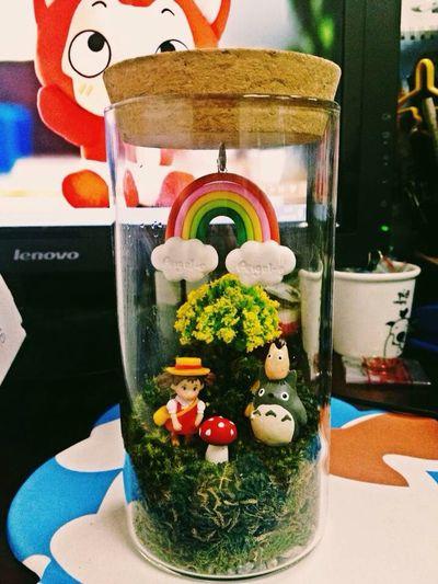 Having Fun Enjoying Life Totoro Taking Photos Relaxing Plants Funny DIY Bonsai Eye4photography